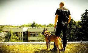 maitre chien securité Rouen